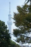 Point de repère de Tokyo Skytree de Tokyo Photos libres de droits
