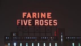 Point de repère rose de Farine cinq Montréal Image stock
