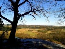 Point de surveillance sur la colline dans les bois une journée de printemps images stock