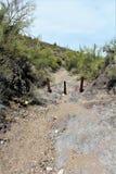 Point de vue de vue d'aiguille de tisserands, jonction d'Apache, Arizona, Etats-Unis photographie stock