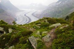 Point de vue de glacier d'Aletsch images libres de droits