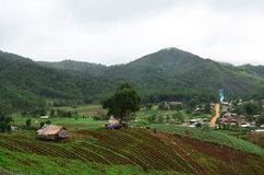 Point de vue de panorama à, Mae Hong Son Province de la Thaïlande du nord Photo libre de droits