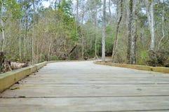 Point de vue en bois de pont Photographie stock libre de droits