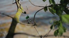 Point de vue tout en moulant la ligne de pêche en rivière La vie de camp déplacement banque de vidéos