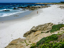 Point Joe, Pebble Beach CA Stock Photography