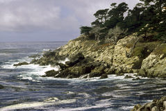 Point Lobos Stock Image