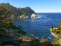 Point Lobos Image libre de droits
