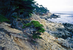Point Lobos. Coast of Pacific Ocean in Point Lobos, California Royalty Free Stock Images