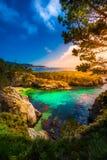 Point Lobos State Park California. China Beach Point Lobos California State Reserve Stock Images