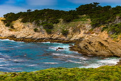 Point Lobos State Park California Stock Images