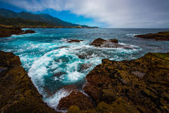 Point Lobos State Park California Royalty Free Stock Photography