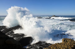 Point Lobos State Park, Monterey, California Stock Image