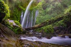 Point névralgique étonnant de cascade Photos stock