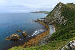 Point Nouvelle-Zélande de pépite Images libres de droits