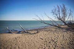 Point Pelee National Park Beach In The Fall At Sunset Time, Lake Royalty Free Stock Images