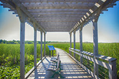 Point Pelee national park boardwalk in the summer, Ontario, Cana Royalty Free Stock Images