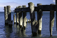 50 Point Pier Stock Photography