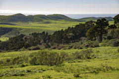 Point Reyes National Seashore, California Royalty Free Stock Images