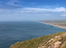 Point Reyes National Seashore park Royalty Free Stock Photo