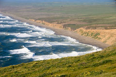 Point Reyes Shore, California Royalty Free Stock Photos