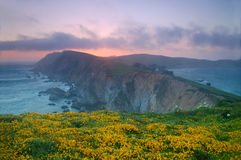 Point Reyes Sunset royalty free stock photography