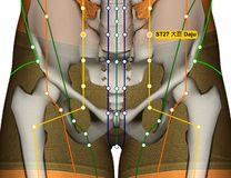 Point ST27 Daju, méridien d'acuponcture d'estomac illustration libre de droits
