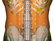 Point ST22 Guanmen, méridien d'acuponcture d'estomac illustration de vecteur