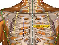 Point ST16 Yingchuang, méridien d'acuponcture d'estomac illustration stock