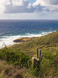 Point Udall View Stock Photo