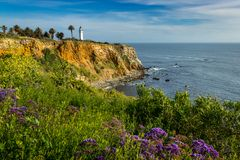 Point Vicente Super Bloom image libre de droits