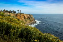 Point Vicente Super Bloom photographie stock libre de droits