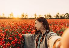 Point of view of beautiful woman making selfie in flower field. Point of view image of beautiful young woman making selfie in poppy flower field at sunset in royalty free stock photos