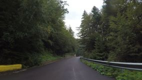 Point of view of car driving through alpine forest on winding road cloudy sky in background -. Point of view of car driving through alpine forest on winding road stock footage