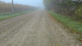 A point of view drive down a country road on a foggy day stock footage