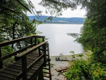 The point of view from a hiker on the west coast trail about to climb down a very high ladder. stock photos