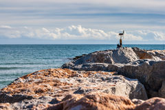 Point of view. Sea views next the beach and the breakwater Royalty Free Stock Photos