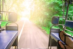 Point of view shot from inside a moving tuk tuk. travel around Asia, Sunny road in the forest. BLur and soft Focus. stock photography