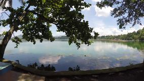 Point of view of trees and vegetation on mountain lake. Tracking shot. San Pablo City, Laguna, Philippines - September 8, 2015: Point of view of Trees and stock video footage