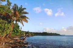 Pointe Borgnese - la Martinica - FWI - i Caraibi immagini stock libere da diritti
