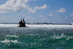 Pointe D'Esny,  Ship Wreck of the Dalblair, unfortunate shipwreck. Royalty Free Stock Photography