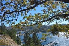 Pointe de flèche de lac Image stock