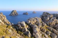 Pointe de Stylo-Hir et tas de pois Images libres de droits