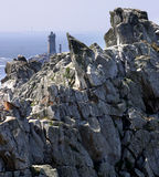 Pointe du raz Royalty-vrije Stock Foto