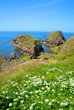Pointe du Van - Brittany, Northern France Stock Photography