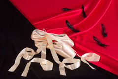 Pointe shoes royalty free stock image