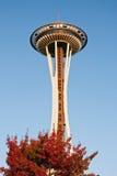 Pointeau de l'espace à Seattle pendant le coucher du soleil Image libre de droits