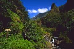 Pointeau Maui d'Iao image libre de droits