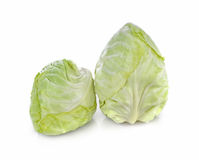 Pointed Cabbage on white background. Stock Photo