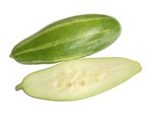 Pointed gourd. Over white background royalty free stock image