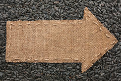 Pointer of  burlap lies on sunflower seeds Royalty Free Stock Images